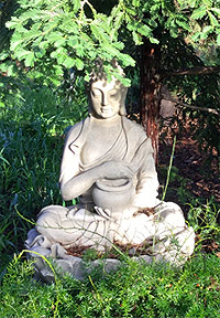 Buddha statue at tree